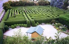 Westbury Maze, Tasmania, Australia. My kids loved our holiday at the maze. Beautiful countryside too.