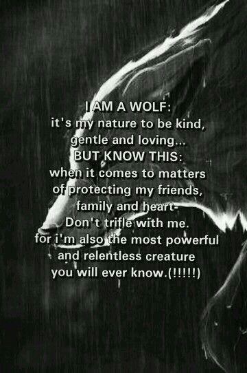 Daddy Wolf!