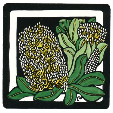 Coastal Banksia Square - Limited Edition Handpainted Linocuts by Lynette Weir