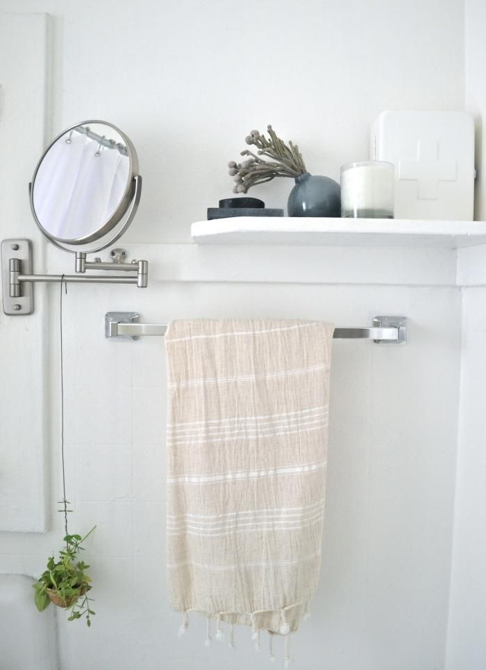 Ants In Bathroom Classy Design Ideas
