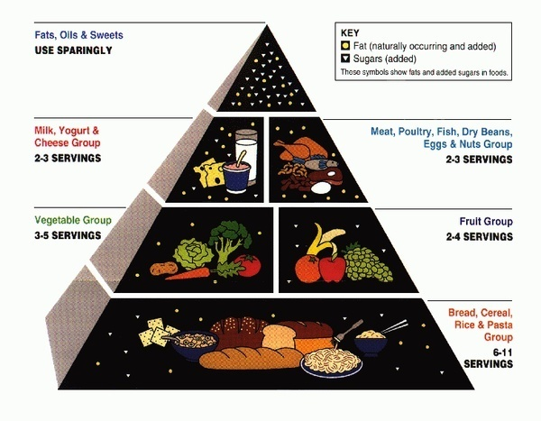 the food pyramid picture-day: Low Sugar, Food Group, Diabetes Food, Healthy Eating, Diabetes Diet, Diet Plans, Foodpyramid, Food Pyramid, Weights Loss