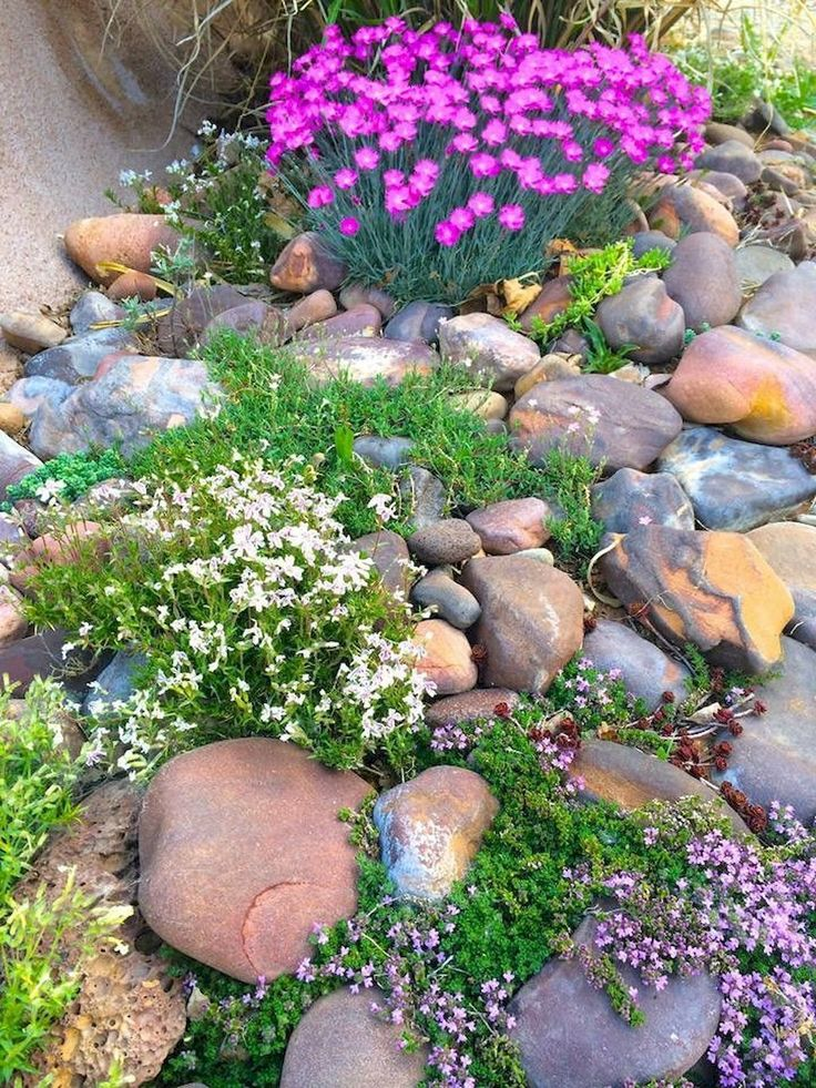 36 stunning front yard rock garden landscaping ideas – Isagenix Representative -Holly Meyer