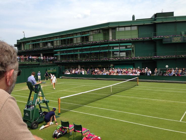 Court 19 #wimbledon #wildwednesday
