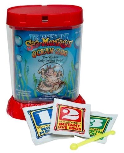 Sea Monkeys!!! We used to convince our mom to get these for us about once a year! :)