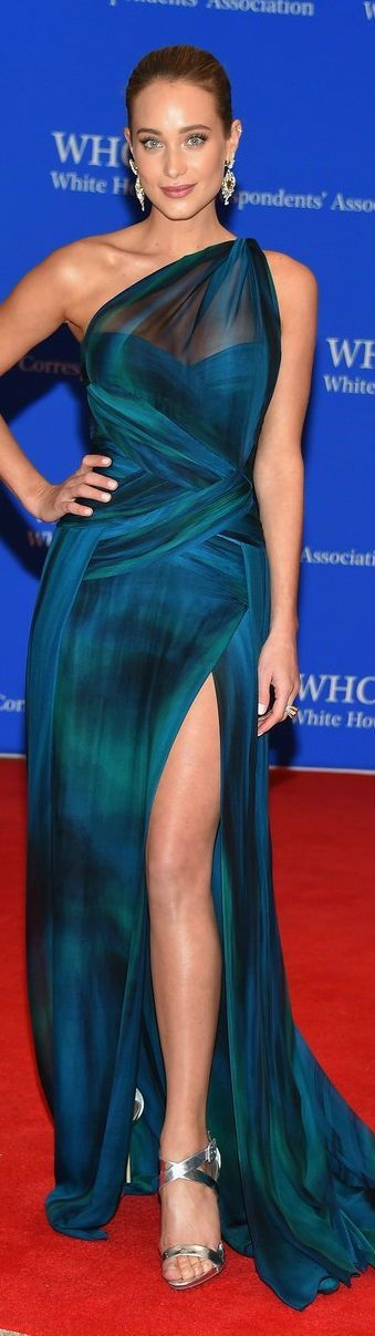 Hannah Davis in Georges Chakra Couture – 2015 White House Correspondents' Association Dinner