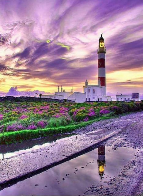 Alwan Tàbiaa - amazing PURPLE LANDSCAPE -  #lighthouse sky - http://dennisharper.lnf.com/