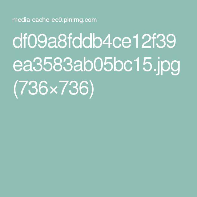 df09a8fddb4ce12f39ea3583ab05bc15.jpg (736×736)