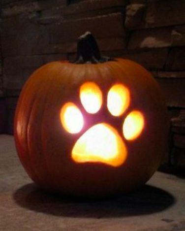 15 Adorable Pumpkin Carving Ideas