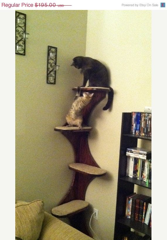 "SUNDAY SALE Cat Tower, Corner Climbing Cat Tree. 68"" Real Oak Ply Wood Furniture For Kitties. Cat scratching post, climbing tower. on Etsy, $175.50"