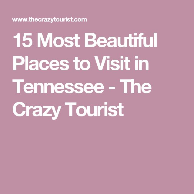 544 Best Images About Tennessee On Pinterest Peabody Hotel Memphis Memphis And Nashville