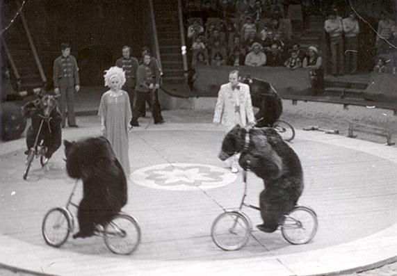 Historical photo of Berousek Circus (photo courtesy of www.berousek.cz)