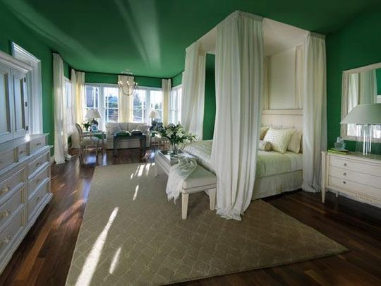 The green makes the room pop out really well!: Decor, Ideas, Ceiling, Dream, Color, Canopy Beds, Bedrooms, Master Bedroom