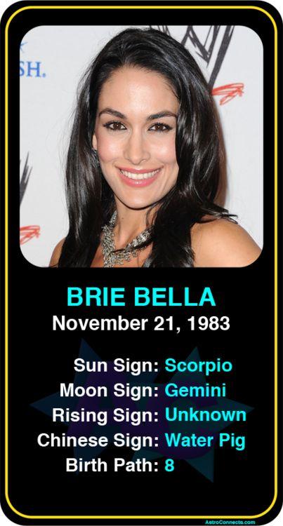 Nikki bella phone number