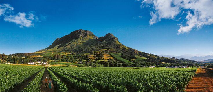 #DeinSuedafrika: Gewinne noch bis zum 30.08.15 deine #Reise nach #Kapstadt! Jetzt mitmachen.