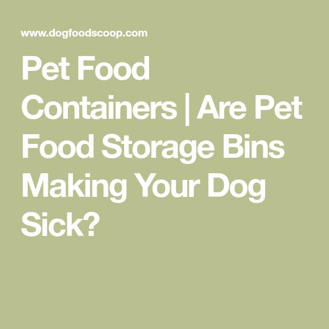 Pet Food Containers | Are Pet Food Storage Bins Making Your Dog Sick?