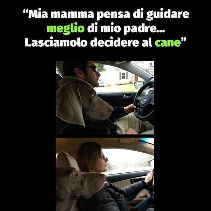 """Mi piace"": 9,076, commenti: 10 - Comix (@comixofficial) su Instagram: "" #paroladiComix #comix #mamma #papà #guidare #guida #auto #macchina #cane"""