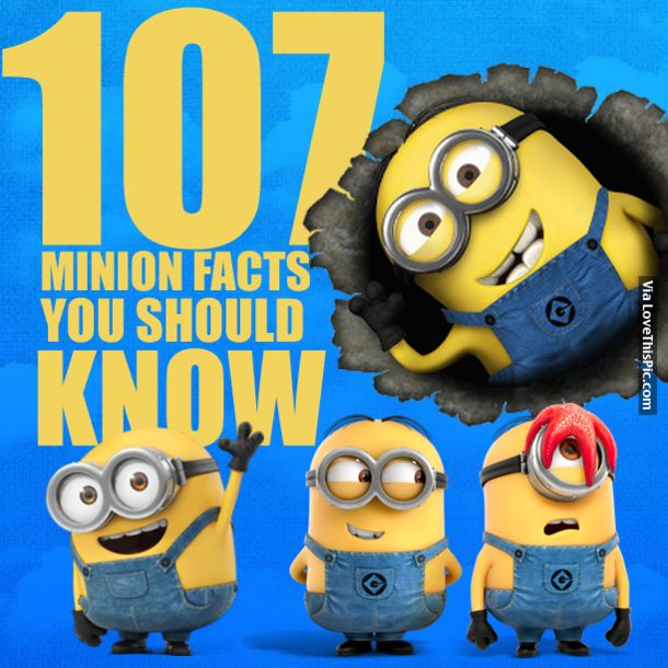 107 Minion Facts You Should Know video minion minions videos minion video minion videos minion facts