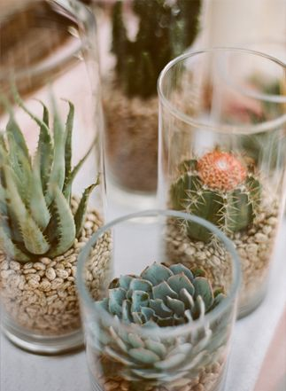 Glass cylinders in varying heights on the cupcake table.  Could be fun to have a mix - some cylinders filled with water and floating votives, and others with succulents.  I don't like the beans as the base - a loose gravel would be much prettier.