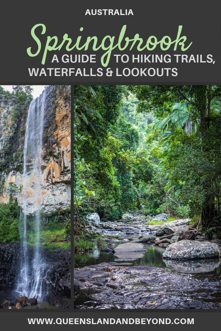 Hiking Springbrook National Park: A waterfall guide | We