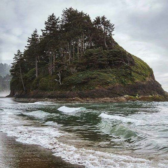 499 best images about oregon washington heaven on for Neskowin beach