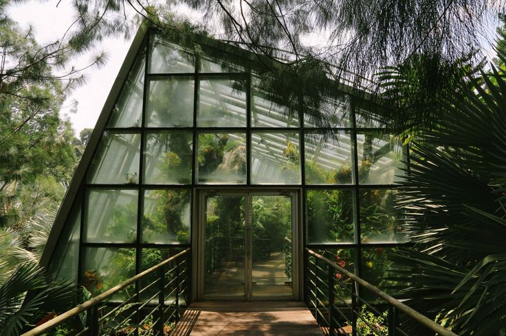 The Coolhouse at Singapore Botanic Gardens  by Ianception(via tumblr)