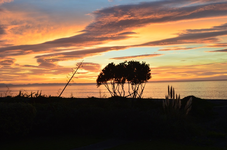 This mornings beautiful sunrise in Bayview Napier NZ