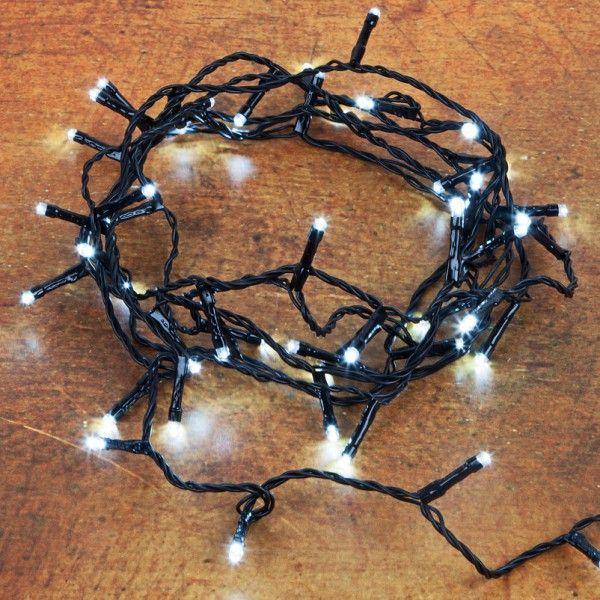 Pflanzen-Kölle LED Twinkle Ricelight-Batterie-Lichterkette 48 Lichter, kaltweiß, 3, 5 m, schwarzes Kabel  LED Twinkle Ricelight-Batterie-Lichterkette mit 48 Lichtern, integrierter Zeitschaltuhr, 8 verschiedenen Blinkfunktionen inkl. Dauerlicht und Memorychip.