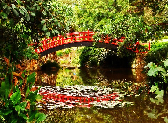 Wollongong Botanic Garden Australia. Maybe this place would be awesome for a stretch after hours in a car??