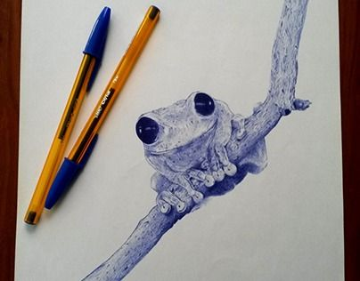 """Check out new work on my @Behance portfolio: """"""""Frog"""" with blue bic cristal pen 21x29.7 cm"""" http://be.net/gallery/59006403/Frog-with-blue-bic-cristal-pen-21x297-cm"""