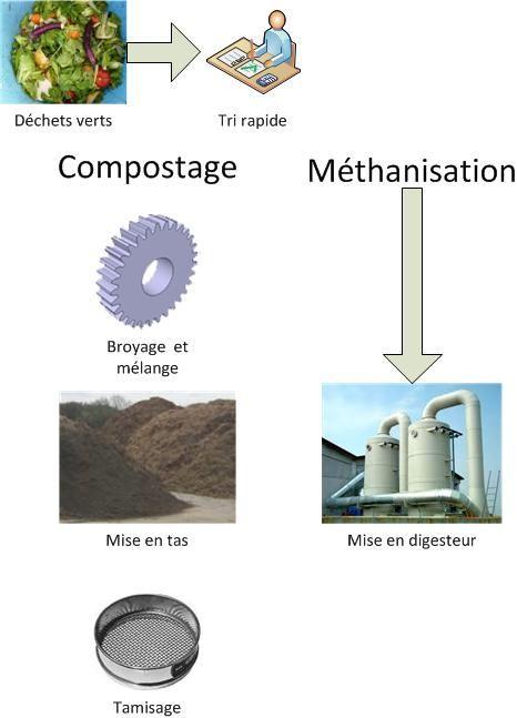 Pourquoi recycler ?Que trouve-t-on dans les déchets organiques ?Les déchets organiques sont l'ensemble des déchets pouvant être dégradés par des micro-orga