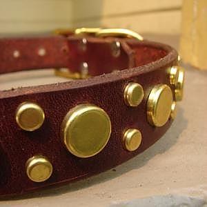 small_dog collar 0000000571.jpg (300×300)