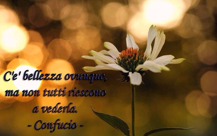 www.psicologadelbenessere.it #psicologia #torino #benessere #happy #positivethoughts #well-being #lnspirational #psychology