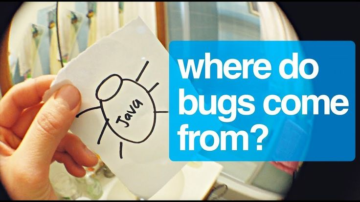 Where do software bugs come from?