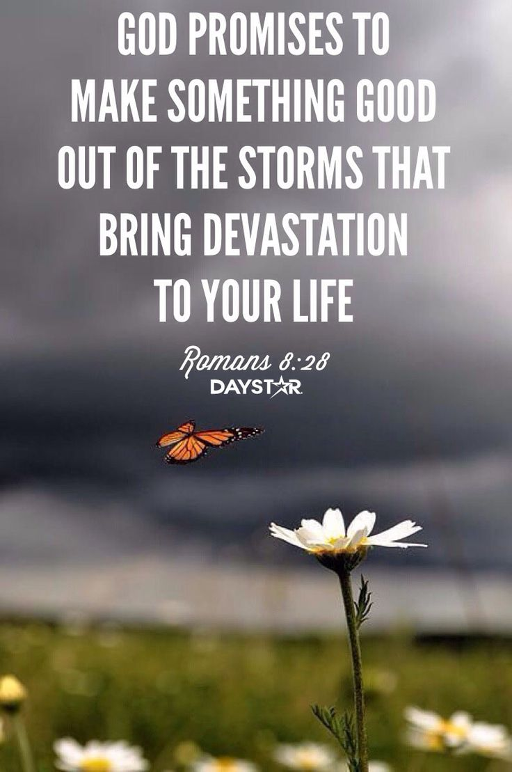 """God promises to make something good out of the storms that bring devastation to your life."" -Romans 8:28 [Daystar.com]"