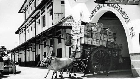 Sociale geschiedenis | Indisch genieten (1). Bier |