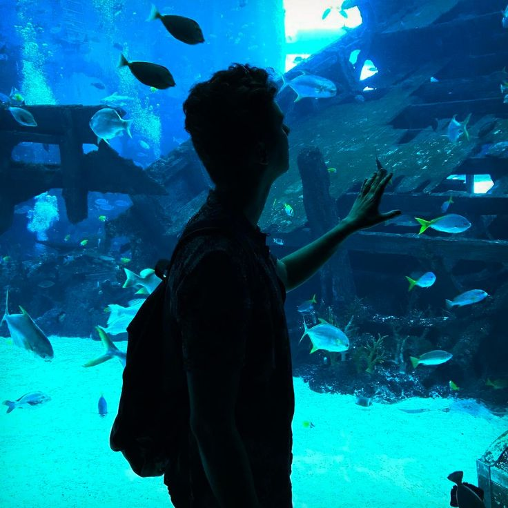 everyone at the aquarium was doing this pose so i did it too i wonder what deep thought i'm suppose to be having