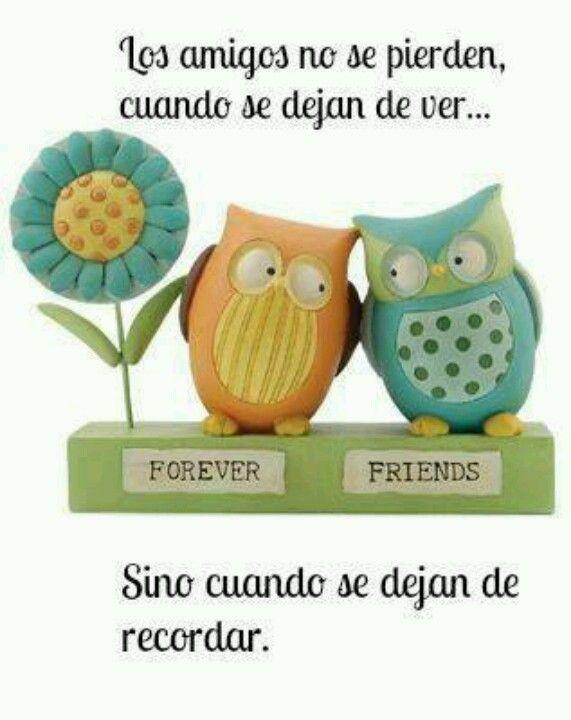 La amistad es para siempre y verdadera ; )