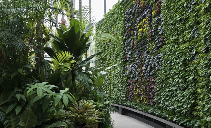 What to see at Sydney Botanic Gardens