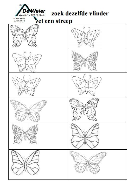 Zoek dezelfde vlinder en zet een streep. [deweier.nl]