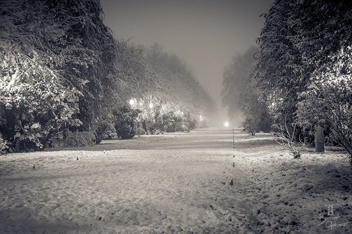 winter in Bucharest - photo from Bucuresti Optimist
