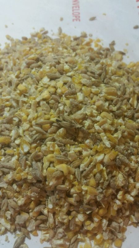 Simple Homemade Chicken Feed - Home - A Return To Simplicity