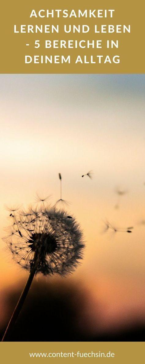 Achtsamkeit lernen und leben – 5 Bereiche in Deinem Alltag