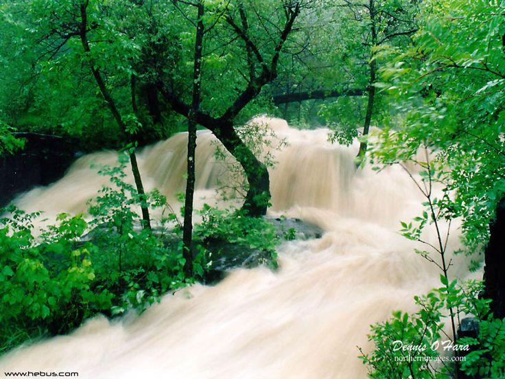arus sungai