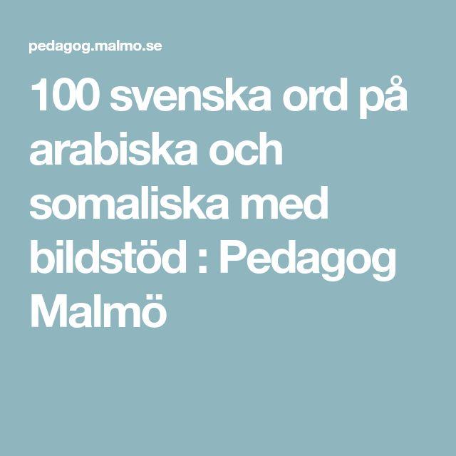 100 svenska ord på arabiska och somaliska med bildstöd : Pedagog Malmö