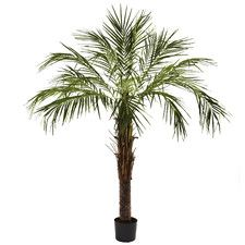 Robellini Palm Tree in Pot | Fake Palm Tree | Tropical Decor | Silk Palms | Indoor Plant | Nearly Natural