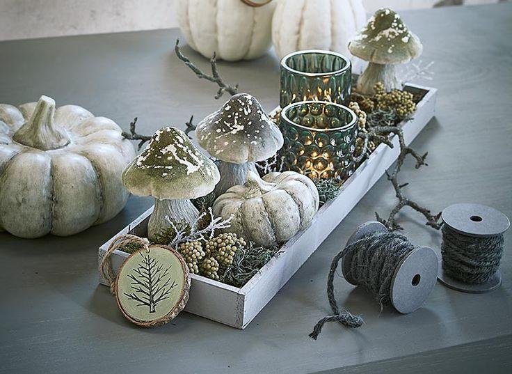 DEPOT Tipp Green Autumn                                                                                                                                                                                 Mehr