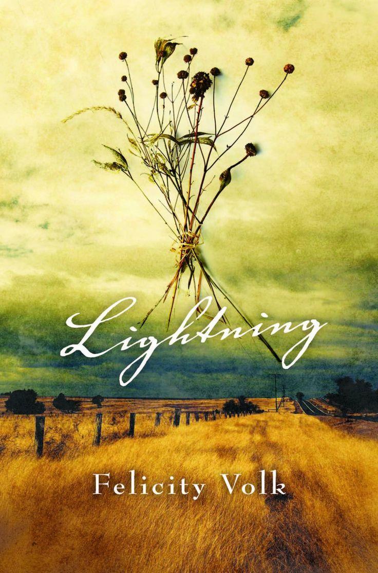 Lightning by Felicity Volk.