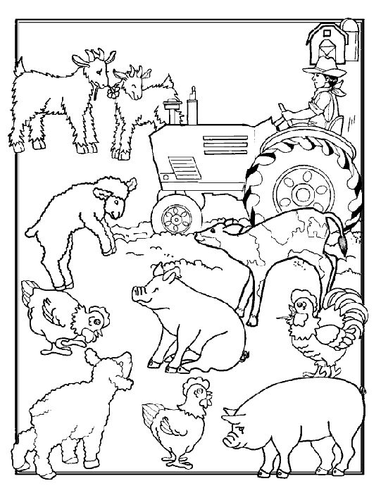 a lot of farm animals pictures for coloring leuke kleurplaat voor cooperatieve - Amish Children Coloring Book Pages