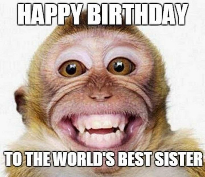 91 Happy Birthday Sister Memes For Your Sibling That Is Also A Friend Friday Quotes Funny Friday Humor Its Friday Quotes