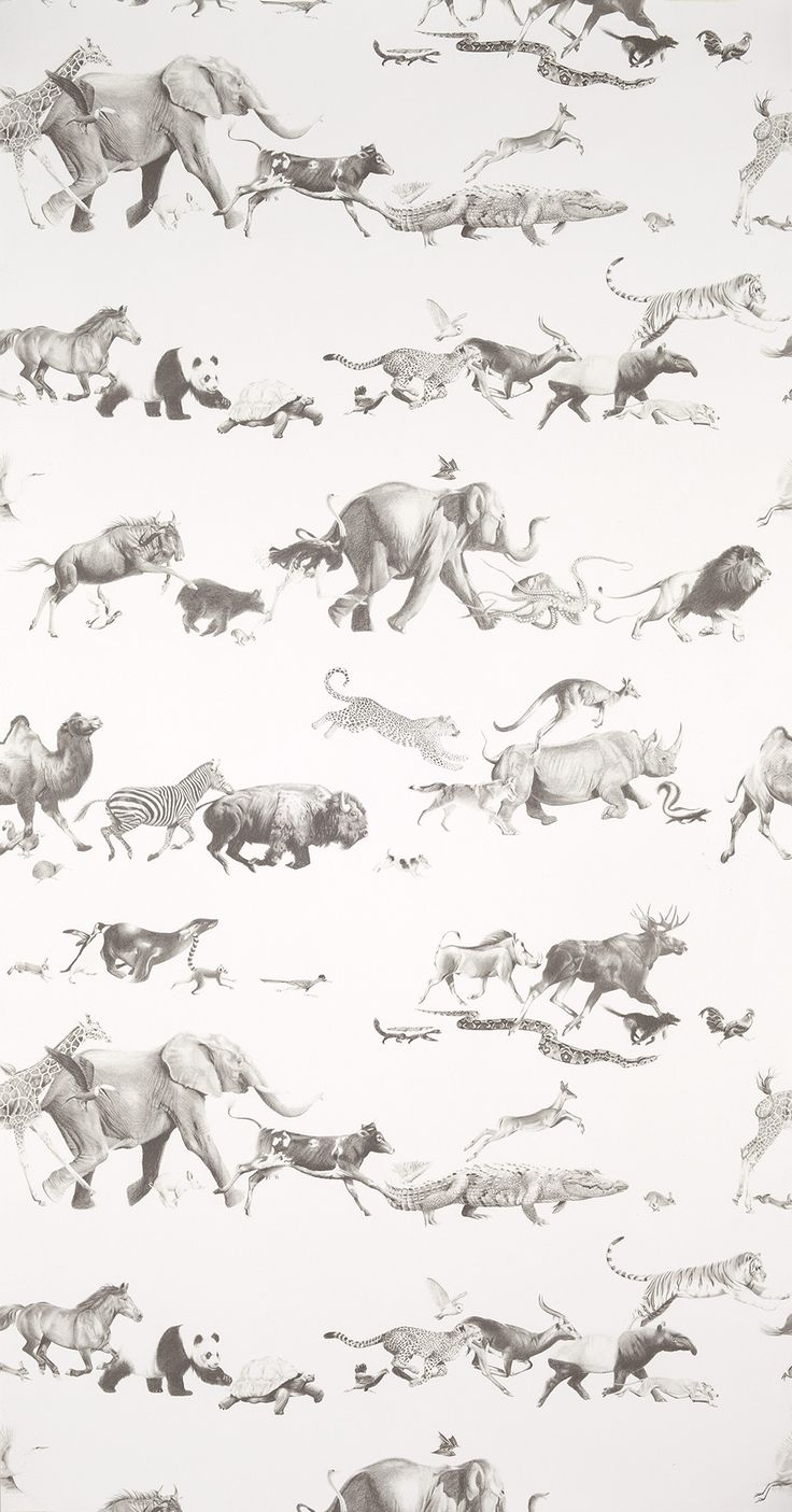 Animals - Pencil on Bone Wallpaper